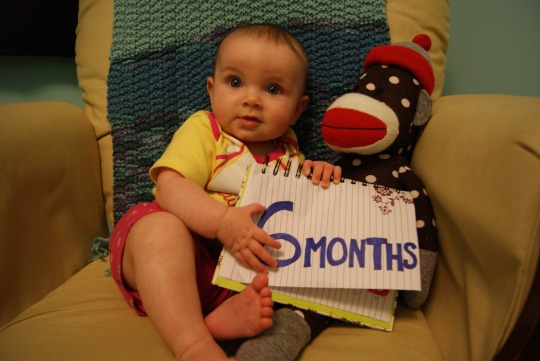 Hilary - 6 months old