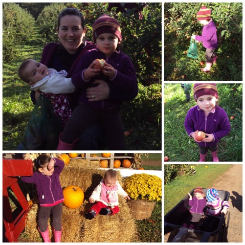Apple picking Oct 2013