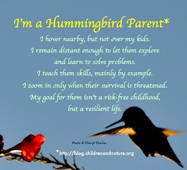 Hummingbird Parent: http://blog.childrenandnature.org/2014/03/10/seven-actions-parents-can-take-to-increase-outdoor-safety/