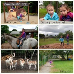 PR Zoo