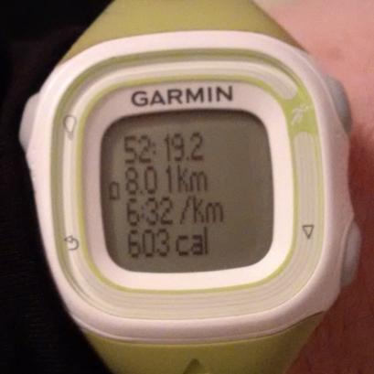 feb 3rd run
