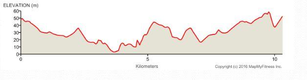Bluenose Marathon 10k 2016 Elevation