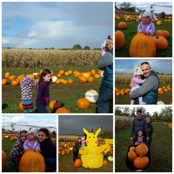 pr-pumpkin-picking-2016